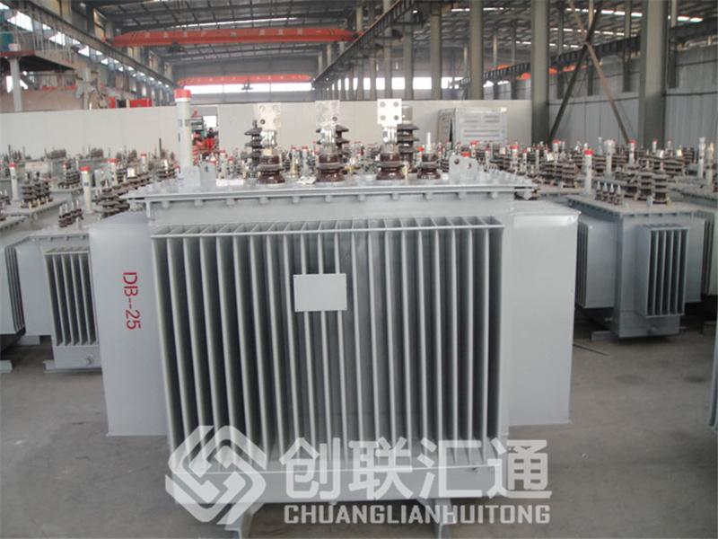 坚持自主创新,推动输变电重大技术装备国产化进程,积极走出去参与世界各国电力建设,推动干式变压器输变电技术输出。